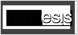 Nethesis Logo