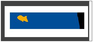 Synway Logo